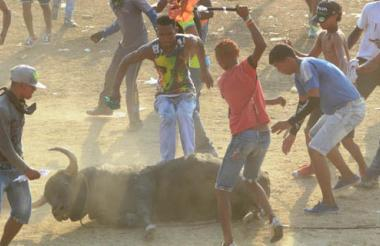La escena volvió a repetirse: espectadores saltaron a patear y golpear al toro con palos.