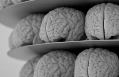 Las ideas perdidas en nuestro cerebro podrán ser rescatadas por este asistente cognitivo