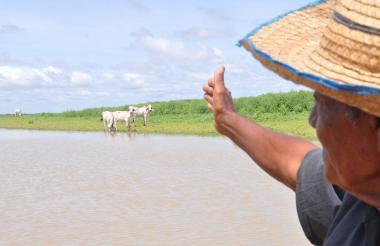 Un campesino señala tierras dedicadas a la ganadería.