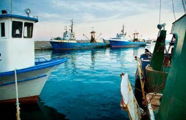 Lo que busca la FAO es tomar medidas para reducir la pesca ilegal.