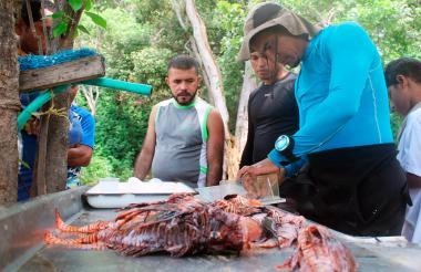 Preparación del pez León para cocinarlo en el Parque Tayrona