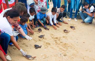 Estudiantes de Instituciones de La Guajira hicieron parte de la liberación de tortugas.