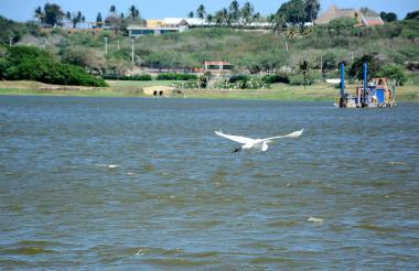El ministro Murillo dice que El Cisne es un cuerpo que se debe seguir recuperando.