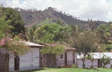 Aspecto de Batata, Tierralta.