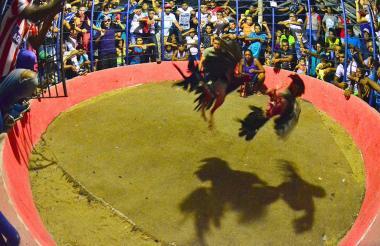Personas observan una pelea de gallos.