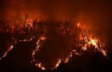 El incendio fue declarado el sábado en horas de la tarde, en Pedrogao, a 50 kilómetros de Coimbra.