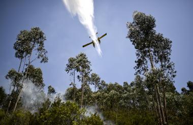 Un avión bombero derrama agua sobre el incendio forestal en Cernache de Bonjardim este martes.