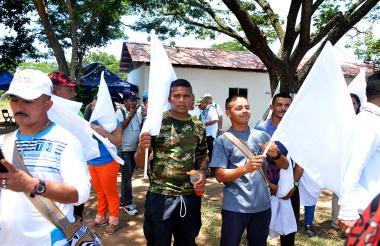 Excombatientes con banderas alusivas a la paz.