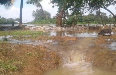 El boquete fue taponado con costales desde la parte alta de la barrera, debido a la incontrolable inundación.