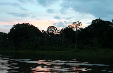 El programa permitirá consolidar áreas seleccionadas en la Amazonía colombiana.