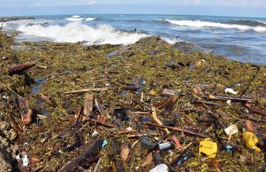 Aspecto actual de las playas de Punta Roca, en Sabanilla, llenas de troncos, taruya y plásticos.