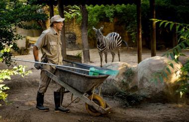 El cuidador Rafael Hernández, quien lleva 24 años en el Zoológico, hace mantenimiento al hábitat de la cebra.