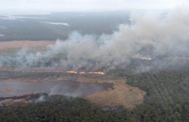 Aspecto de una quema en el Parque Isla Salamanca.