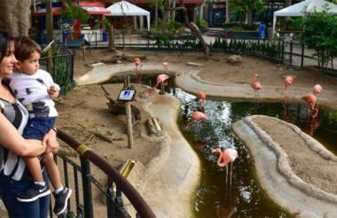 El Zoológico está ubicado actualmente en la calle 76.