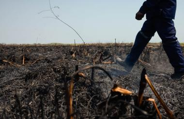 Un bombero inspecciona las quemas ocasionadas.