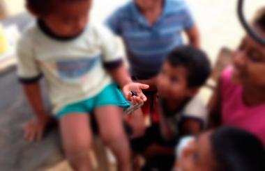 Niños wayuus sostienen una muestra de la nueva especie de escarabajos.