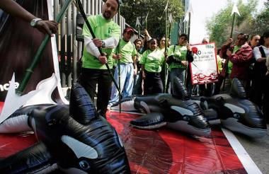 Defensores de animales protestan en las afueras de la Embajada de Japón en la Ciudad de México para pedir que cese la caza de ballenas.
