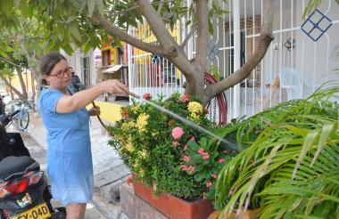 Una mujer riega las plantas con una manguera luego de que se restableciera el servicio en Villa Olímpica.