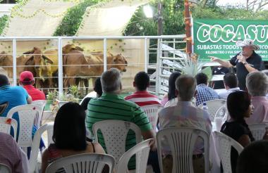 Gustavo Vergara Arrázola, gerente de Cogasucre, dirigirá el sábado 19 los remates bovinos de potrero y cabezal, y el de ovinocaprinos.
