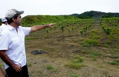 Desde el corregimiento Pendales, en el municipio de Luruaco, Atlántico, el alcalde de B/quilla, Alejandro Char, supervisó el 'Vivero Distrital de la ciudad'.