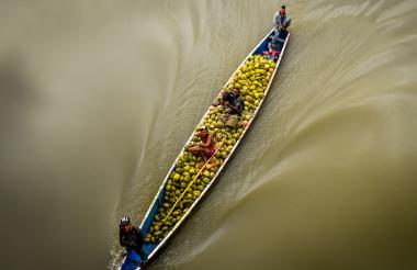 Una balsa de campesinos, cargada con cocos jugosos, navega por las aguas del caudaloso río Magdalena.