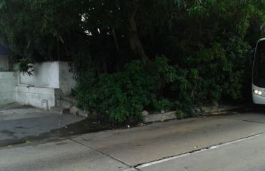 Según el reporte, de esta vivienda salen diariamente aguas servidas y las ramas de los árboles de la misma bloquean la visibilidad.