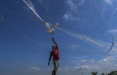 José Martínez De Arco, quien se dedica a la pesca desde los 12 años, arroja la atarraya de nylon transparente en la Ciénaga del Guájaro.