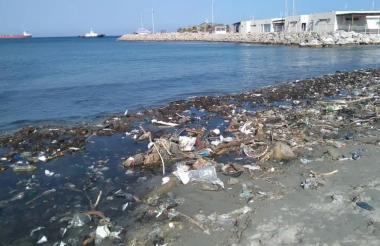 Playa de Los Cocos, donde se presentará el decreto, tras una jornada de limpieza.