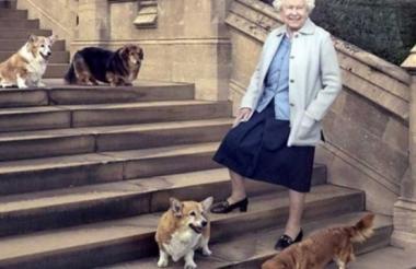 Isabel II en una foto de archivo junto a sus mascotas.