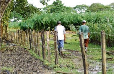 Personas caminan por la hacienda Las Pavas, ubicada en el sur de Bolívar.