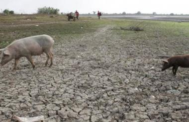 Terreno seco por falta de lluvias.