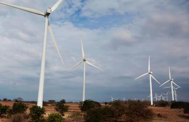 La planta tendrá cerca de 80 generadores.
