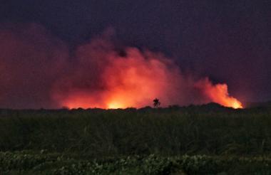 Autoridades del parque desconocen la causa de la quema.