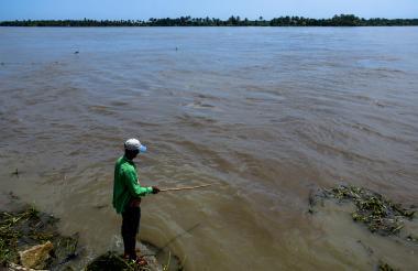 Un hombre realiza labores de pesca en el río Magdalena a la altura de Bocas de Ceniza.