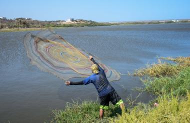 Un pescador lanza al agua su atarraya en una de las orillas del lago El Cisne.