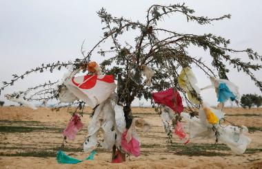 Las bolsas de plástico constituyen parte de los ocho millones de toneladas que van a los océanos.