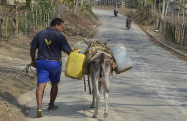 Esta es la situación que se vive a diario en los corresgimientos de Sincelejo, arrear agua a lomo de burros.