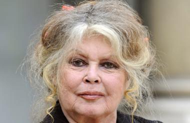 Brigitte Bardot fue criticada en el mundo del espectáculo y también por representantes políticos.
