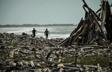 En la playa trasera de Puerto Velero hay ramas, palos y troncos de madera.