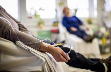 Los cinco macacos del experimento fueron sometidos a una quimioterapia, pero ese tratamiento no los volvió estériles, reconoció Orwig.