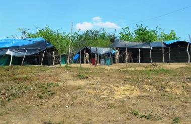 En la vereda El Palmar hay un campamento de desminado humanitario, por donde pasan burros y caballos a diario y sacan productos agrícolas.