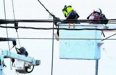 Contratistas de Electricaribe realizan labores de mantemiento de redes.