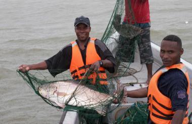 Pescadores artesanales.