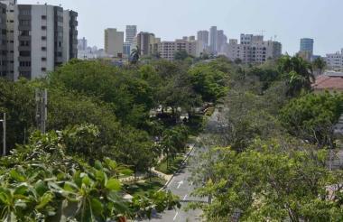 Panorámica de un sector del barrio El Prado, en Barranquilla, una zona urbana de la región Caribe con abundante cubierta vegetal.