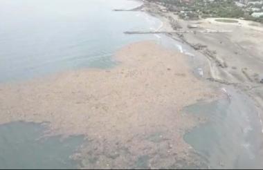 18 kilómetros de playa han sido afectados por la proliferación de basuras en Puerto Colombia.