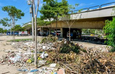 Ramas de árboles y escombros a lo largo de la zona que está debajo del puente de la Murillo.