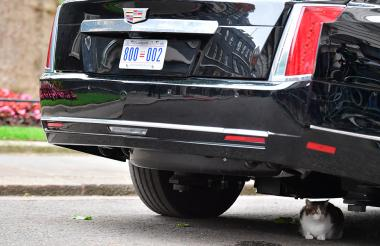 Larry debajo del carro presidencial de Trump.