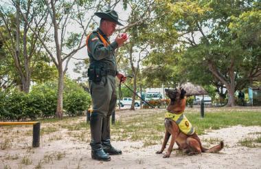 El subintendente Alexander López, guía de Rambo le enseña su pelota favorita al canino.