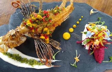 Así luce el pez león frito con chimichurri de mango, acompañado con puré de ñame.