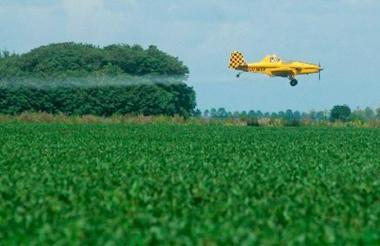 El glifosato era usada para combatir el aumento de cultivos ilícitos en el país.